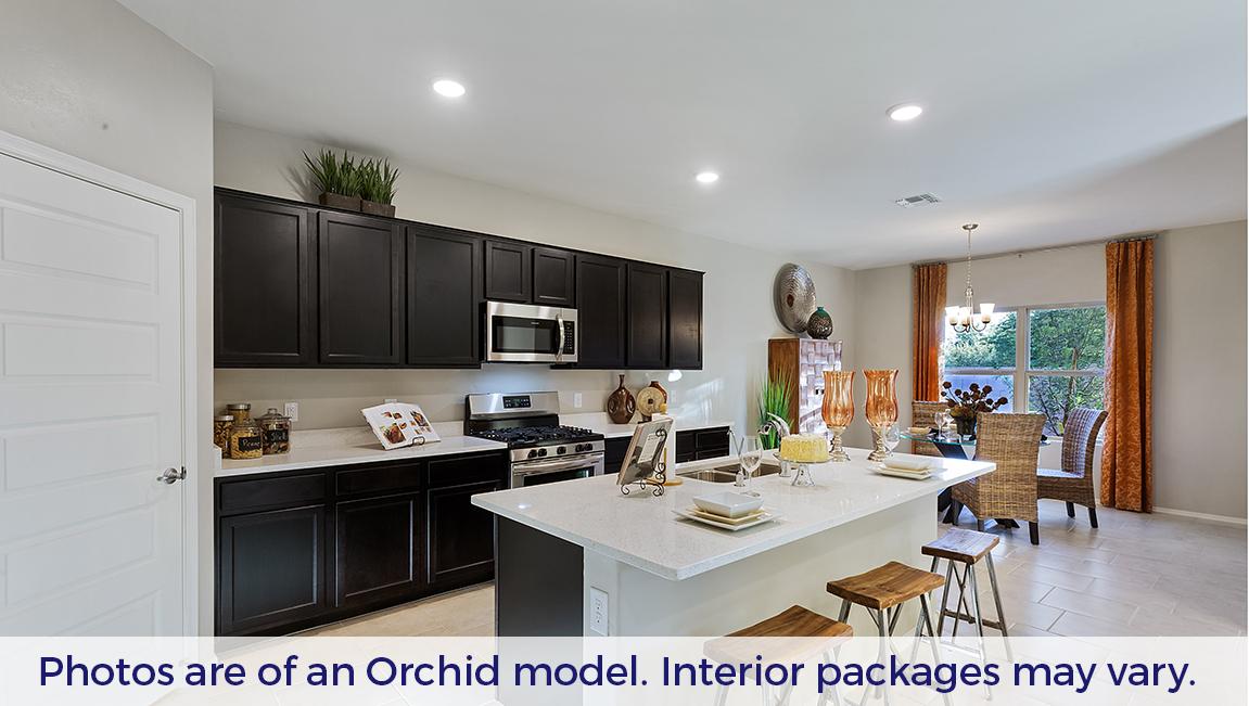 D.R. Horton Santa Cruz Meadows Orchid - Plan 4818 Plan
