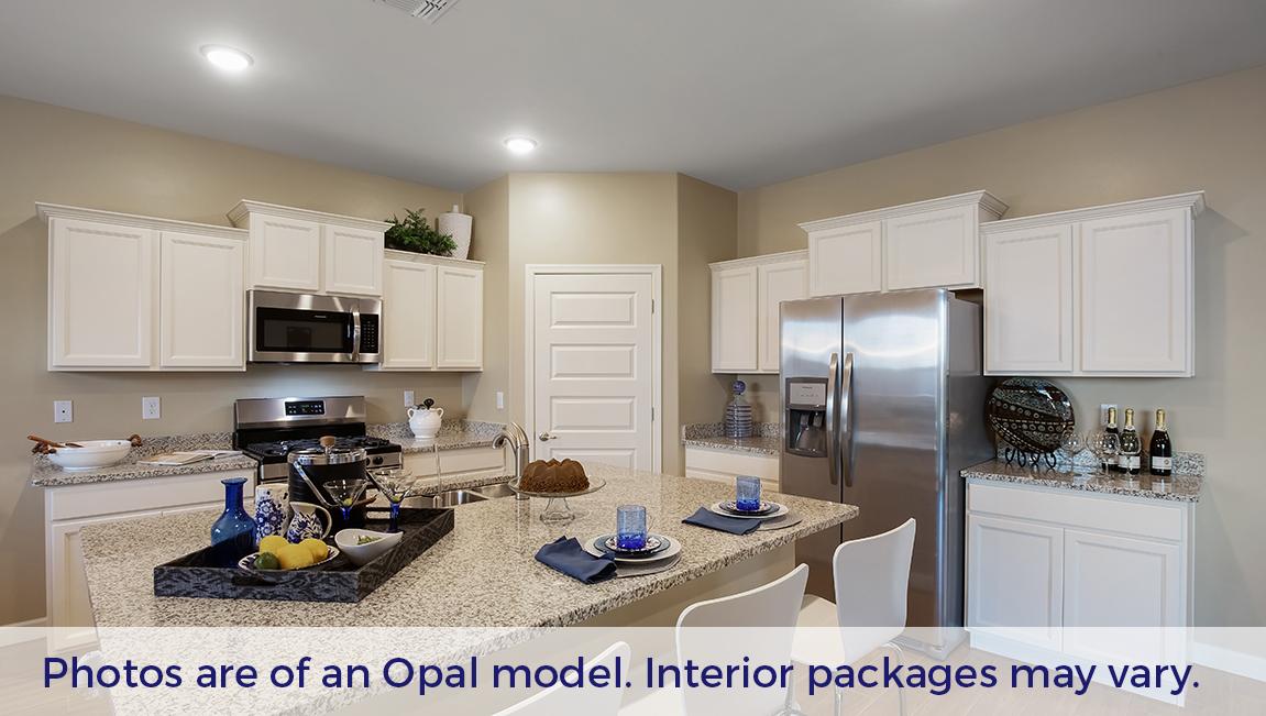 D.R. Horton Santa Cruz Meadows Opal - Plan 5012 Plan