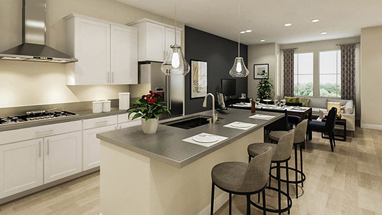 The Residences at Anson - Kitchen