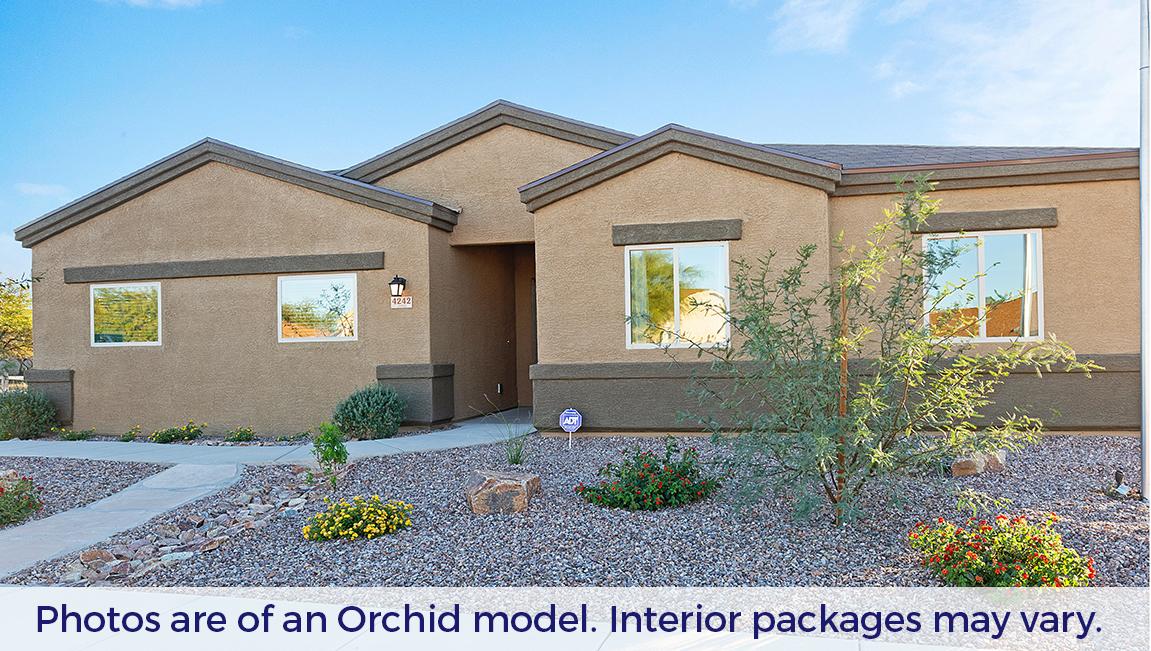 D.R. Horton Santa Cruz Meadows Orchid - Plan 4818 Single Family Home for Sale